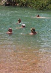 Naked shemale pics